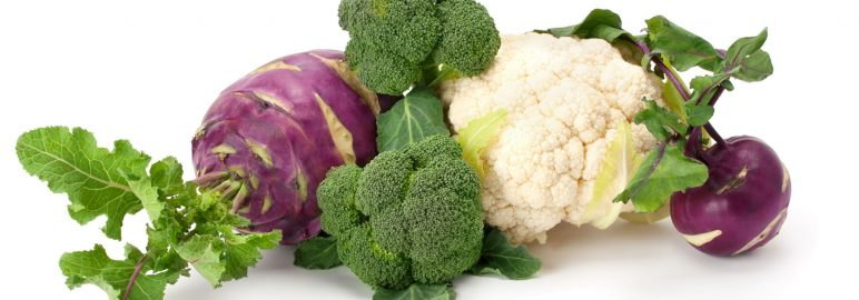 The coleslaw wars